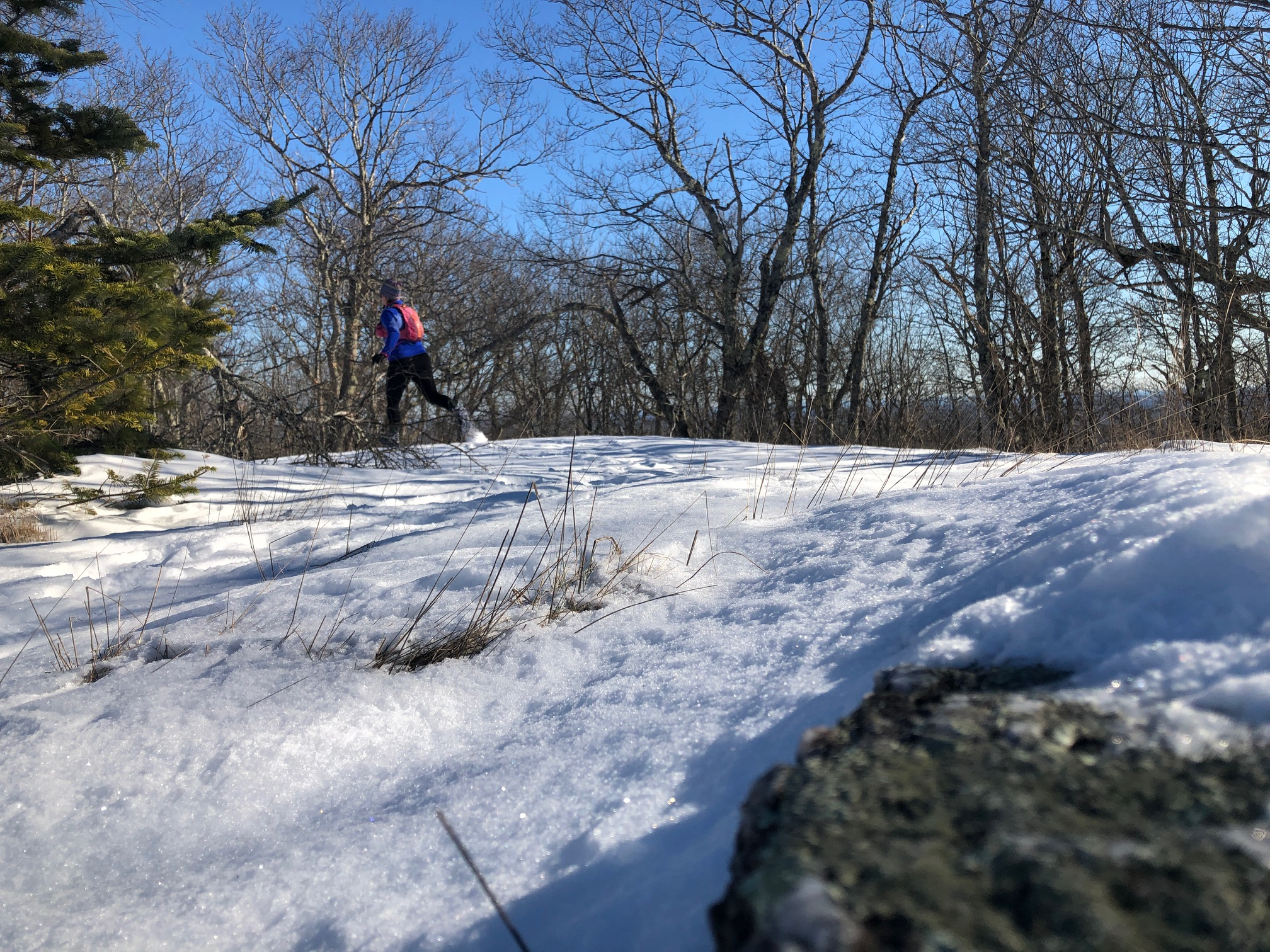 Winter trails are sometimes even better than summer trails!