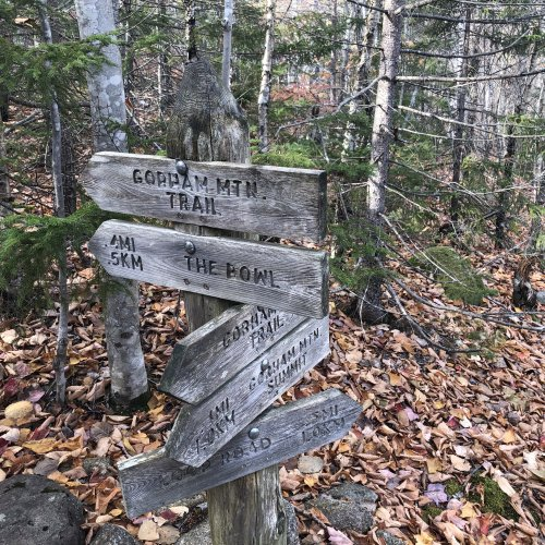 All trail intersections in Acadia National park are well-marked.