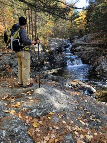 Lentil admiring the cascade falls