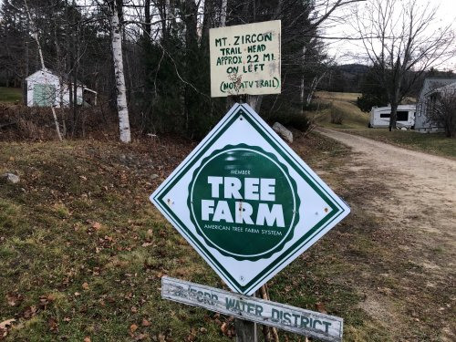 The adventure begins through a tree farm owned by the Rumford Water District.