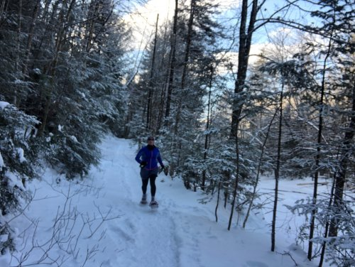 Larry's Trail is a favorite place to snowshoe run!