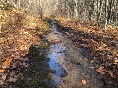 A stable trail base meant I could run through flowing water without damaging the trail itself.