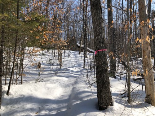 Although I wanted to run two trails, I wound up trailbreaking in six inches of fresh snow on my running snowshoes. My purpose was to work hard for 90 minutes, so I had to let go of the second trail in order to move towards larger ultimate goals.