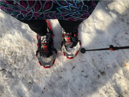 Hardpacked, icy snow. There is no skiing this, but snowshoeing is still fun.