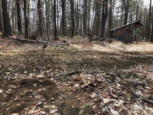 Ruts and debris where the singletrack crosses the nordic trail.