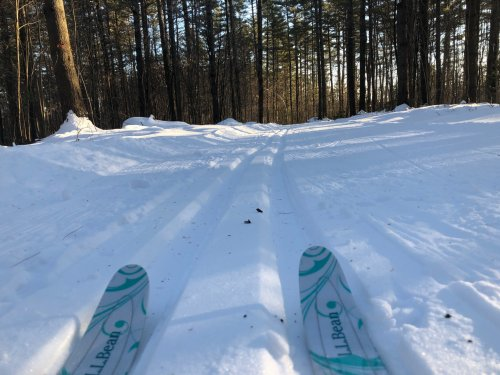 I can't run every day and follow the Ten Percent Rule. Thankfully, cross-training in a Maine winter is gorgeous fun!