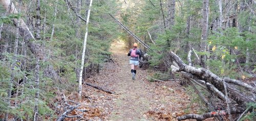 Even with some blowdowns, the trail is relatively open and flat. You can run easy and enjoy the journey.